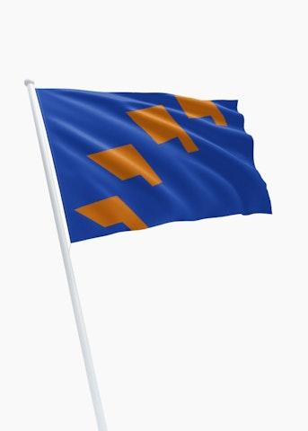 Vlag gemeente Berkelland