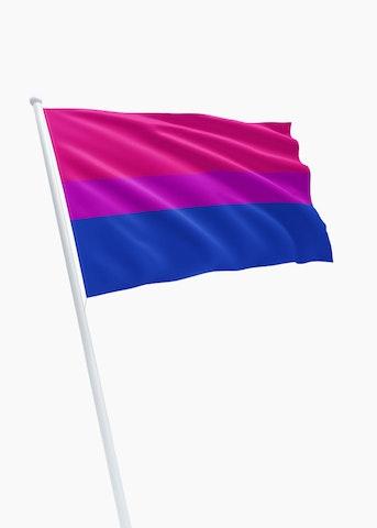 Bisexual Pride vlag