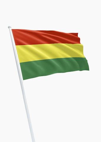 Boliviaanse vlag huren