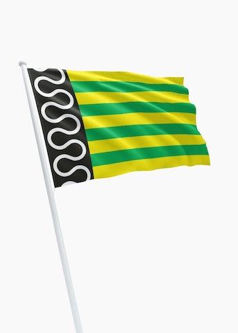 Vlag gemeente De Wolden