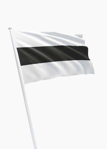 Vlag gemeente Delft
