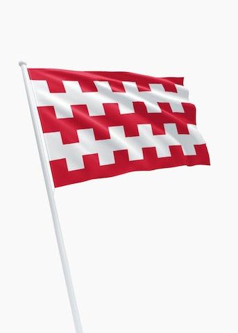 Vlag gemeente Dongen