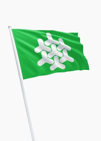 Vlag gemeente Dronten