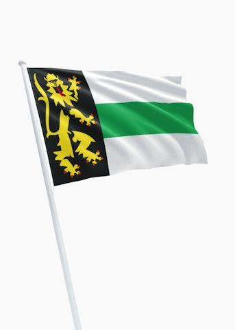 Vlag gemeente Druten