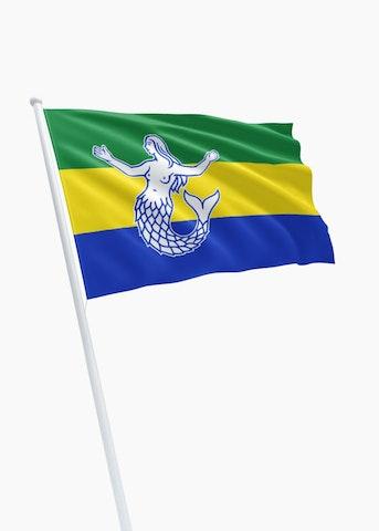 Vlag gemeente Eemsmond