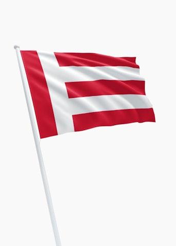 Vlag gemeente Eindhoven