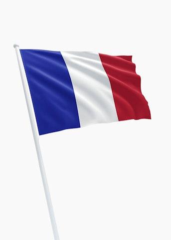 Franse vlag huren
