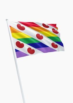 Friese Pridevlag