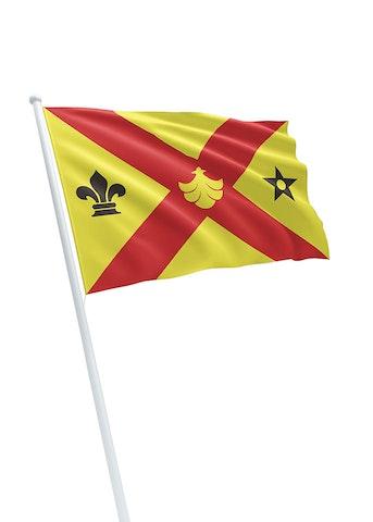 Vlag gemeente Binnenmaas