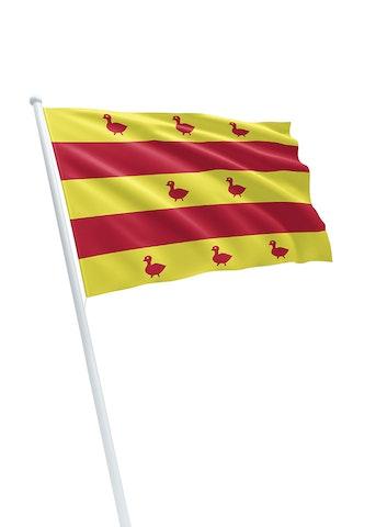 Vlag gemeente Grave