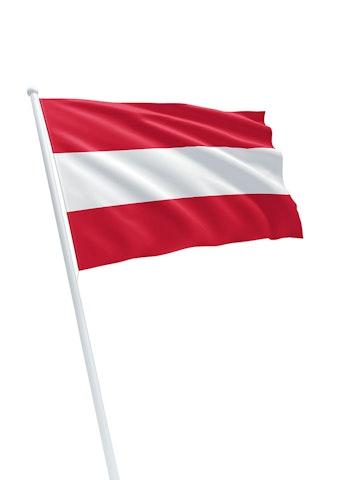 Vlag gemeente Hoorn