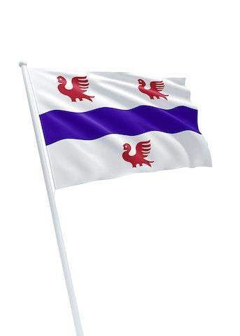 Vlag gemeente IJsselmuiden