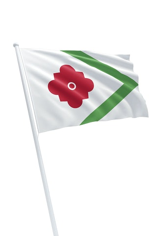 Vlag gemeente Landerd