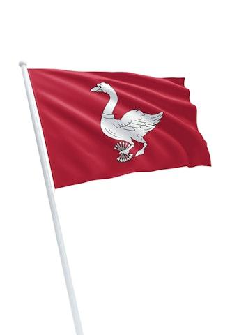 Vlag gemeente Landsmeer