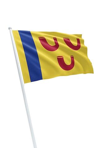 Vlag gemeente Leudal