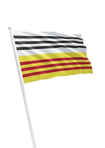 Vlag gemeente Loon op Zand