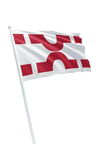 Vlag gemeente Losser
