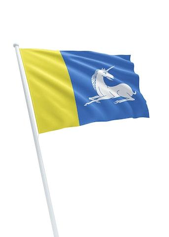 Vlag gemeente Menaldumadeel