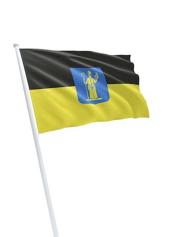 Vlag gemeente Mill en Sint Hubert