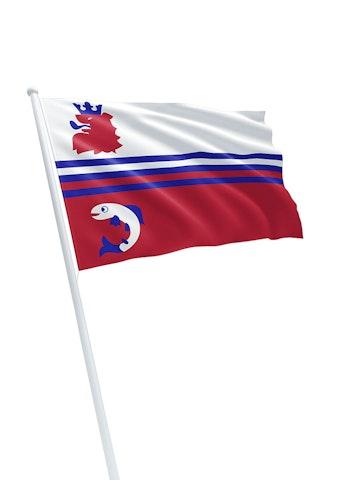 Vlag gemeente Neerijnen