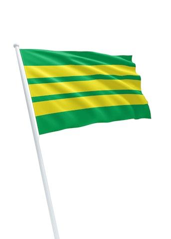 Vlag gemeente Nieuw-Lekkerland
