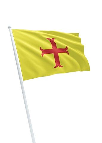 Vlag gemeente Oegstgeest