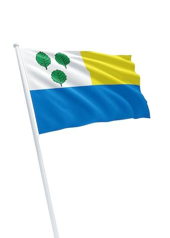 Vlag gemeente Oldebroek