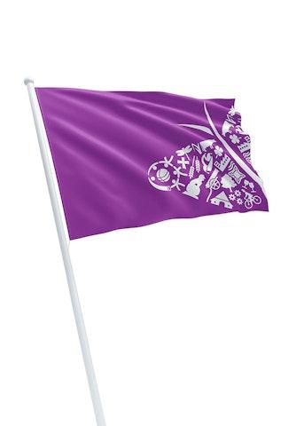 Vlag gemeente Oost Gelre