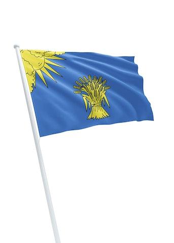 Vlag gemeente Reusel-De Mierden