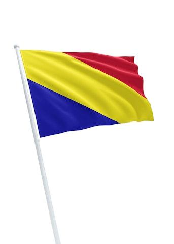 Vlag gemeente Rheden