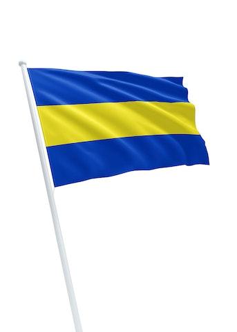 Vlag gemeente Rijswijk