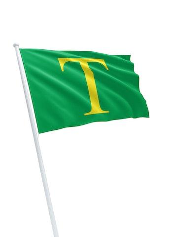 Vlag gemeente Sint Anthonis