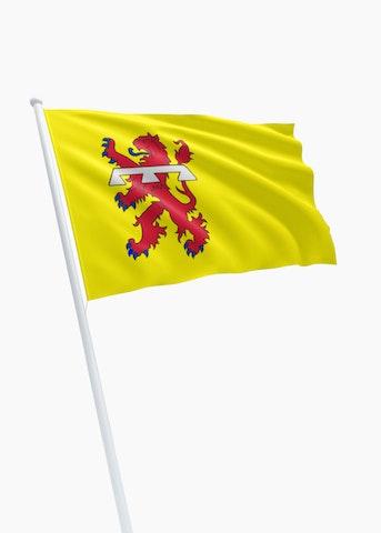 Vlag gemeente Teylingen