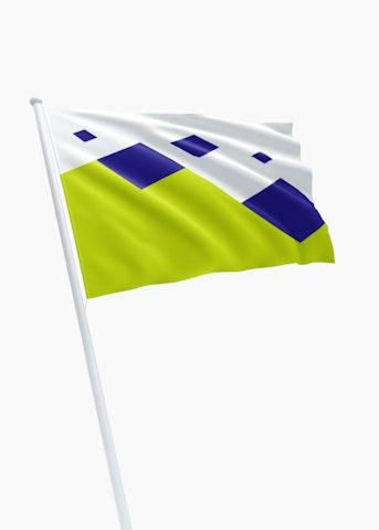 Vlag gemeente Twenterand