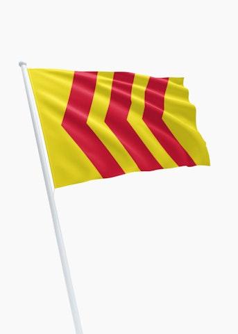 Vlag gemeente Voorst
