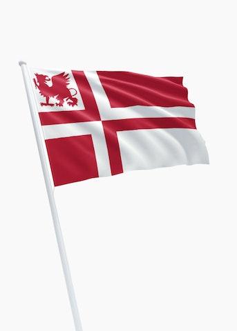 Vlag gemeente Weststellingwerf