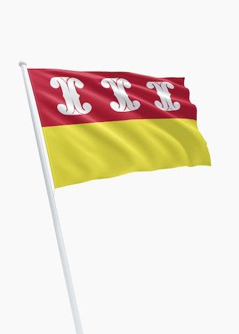 Vlag gemeente Wijk bij Duurstede