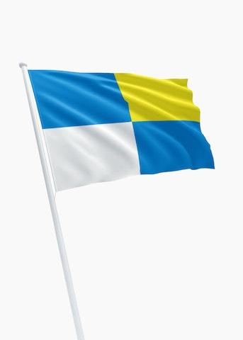 Vlag gemeente Winterswijk