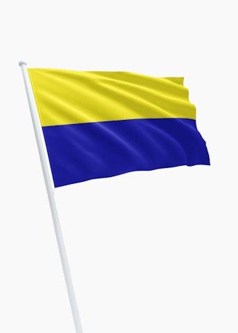Vlag gemeente Zandvoort