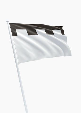 Vlag gemeente Zeist