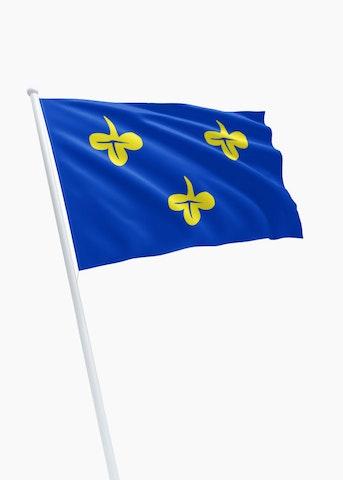 Vlag gemeente Zoeterwoude
