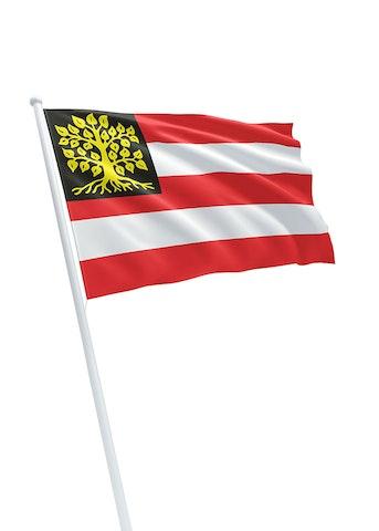 Vlag gemeente Den Bosch