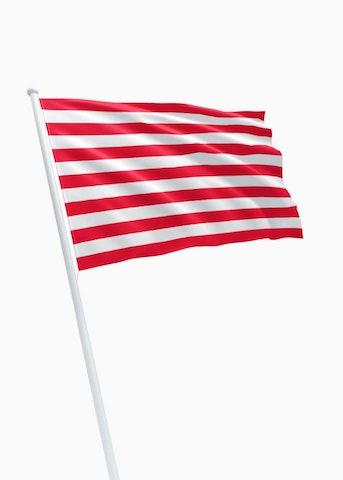 Vlag gemeente Goes