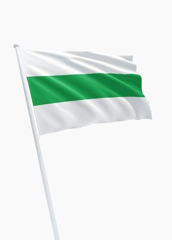 Vlag stad Groningen