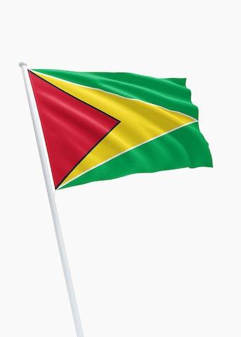 Guyaanse vlag