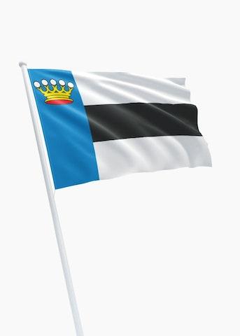 Vlag gemeente Heerenveen