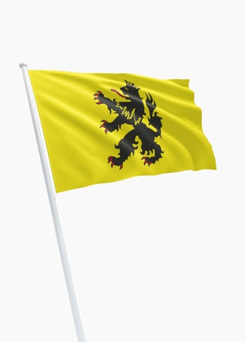 Vlag gemeente Hulst