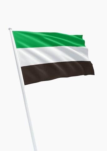 Vlag gemeente Leek