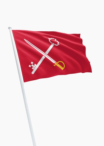 Vlag gemeente Loppersum