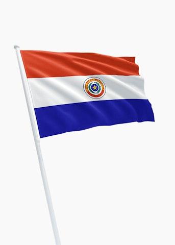 Paraguaanse vlag huren